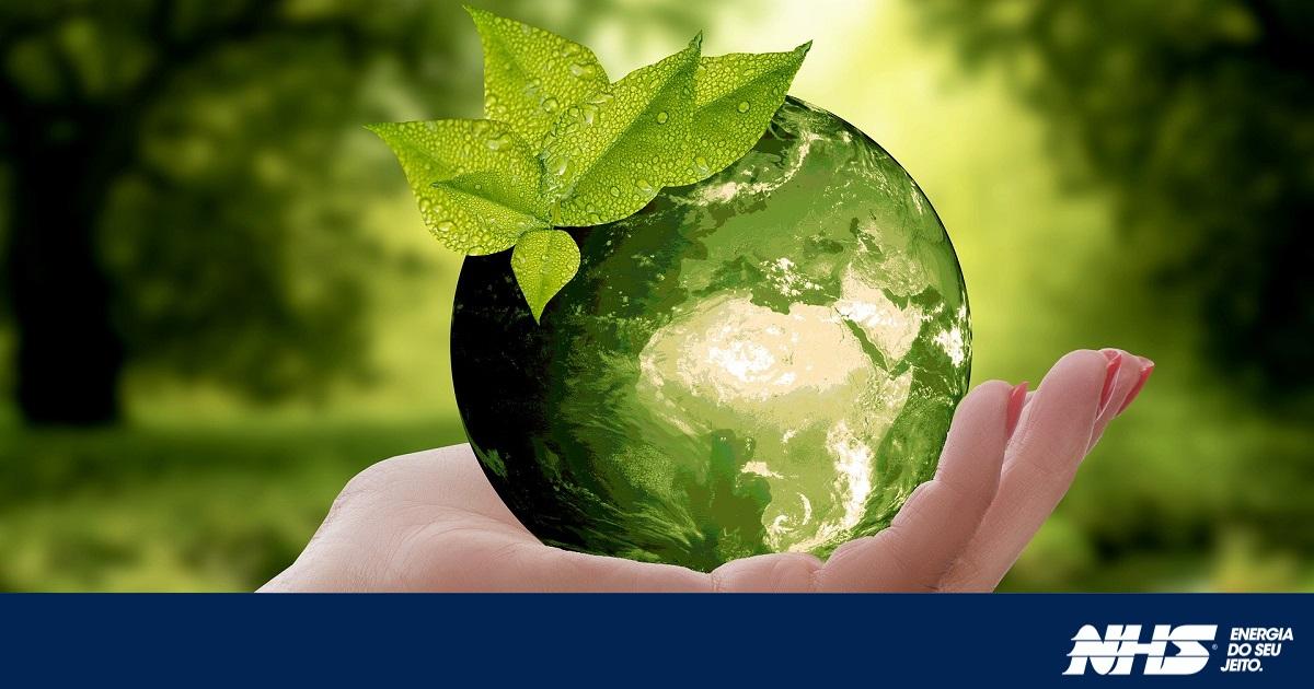 Você Conhece A Diferença Entre Energias Renováveis E Não Renováveis?